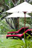 Relax in the rain forest — Stock Photo