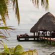Tropical Belize — Stock Photo #37454427