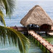 Tropical Belize — Stock Photo #37454441