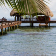 Tropical Belize — Stock Photo #37603667