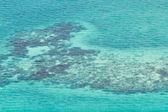 Bariérový útes v Karibiku — Stock fotografie