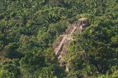 Lamanai, maya ruins — Stock Photo