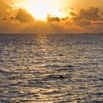 ������, ������: Tropical sun rise