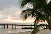 Tropical Beach — Foto de Stock