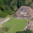 Altun Ha, mayruins — Stock Photo #38014199