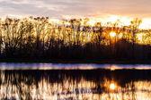 Sunset on the lake — Foto de Stock