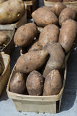 Box of potatoes  — Stock Photo