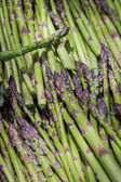 Snapped asparagus — Foto Stock