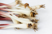 Fresh ramps or wild leeks  — Foto Stock