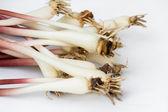Rampas frescas ou alho-poró selvagem — Foto Stock