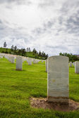 Military graveyard  — Stock Photo