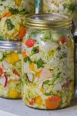 Home made cultured or fermented vegetables  — Stock Photo