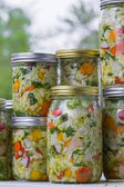 Home made cultured or fermented vegetables  — Stockfoto