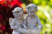 Молодые ангелы — Стоковое фото