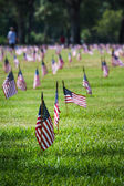 Us flags in a veterans cemetery on Veterans day  — Stock Photo
