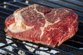 Tráva krmení masa — Stock fotografie