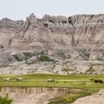Badlands, South Dakota — Stock Photo #50366907