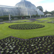 Stock Photo: Kew Palm House