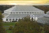 Temperate House at dusk — Stock Photo