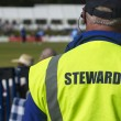 Stock Photo: Sports steward