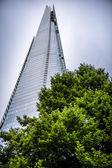 London skyscraper and tree — Stock Photo