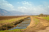 Landscape of the Upper Galilee. Israel. — Stock Photo