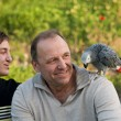 The teenager and his dad with a gray parrot Jaco. - Stock Photo