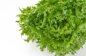 Fresh green iceberg salad leaves — Stock Photo