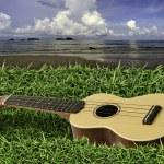 ukulele su erba verde fresca con cielo blu e mare — Foto Stock #49664405