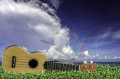 Ukulele on fresh green grass with blue sky and Rainbow — Stock Photo