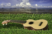Ukulele on fresh green grass with blue sky and sea — Stock Photo
