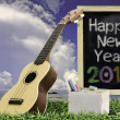 Ukulele with blue sky and Blackboard 2015 text on the grass — Stockfoto