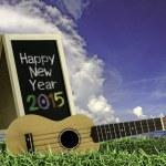 ukulele con cielo blu e testo di lavagna 2015 sull'erba — Foto Stock #49755503