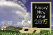 Ukulele with blue sky and Blackboard 2015 text on the grass — Stock Photo