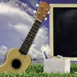 Ukulele with blue sky and Blank Blackboard on green grass — Stockfoto