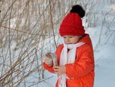 Kışın yürümek — Stok fotoğraf