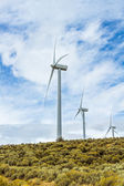 Windmills extract energy from windy regions. — Stock Photo