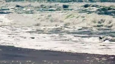 Detailed big white and green wave in Queensland, Australia — Stock Video