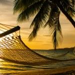 silueta de hamaca con palmeras en una playa al atardecer — Foto de Stock
