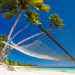 Stock Photo: Empty hammock under palm trees and details of sand