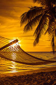 Hammock with palm trees on a beautiful beach at sunset — Stock Photo