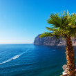 View of Los Gigantes cliffs. Tenerife, Canary Islands, Spain — Stock Photo