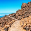 Landscape route on Mount Teide, Spain, Tenerife — Stock Photo