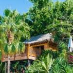 Baumhaus in einem üppigen Wald — Stockfoto #13251256