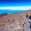 Stock Photo: Family of tourists exploring the Teide Tenerife