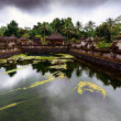 The pool of holy springs at Tirta Empul, Bali Indonesia. — Stock Photo