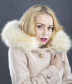 Fur Fashion.Beautiful Woman in Luxury Fur Coat — Zdjęcie stockowe