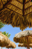 Straw roof of beach umbrella and blue sky — Stock Photo