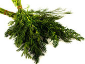 Bunch fresh dill herb close up. Whole background. — Foto de Stock