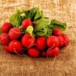 Bunch of fresh radish on the organic texture of canvas — Stock Photo #41541847